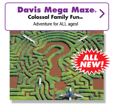 Davis Mega Maze Colossal Family Fun. Adventure for ALL ages.